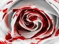 darah_wanita_haidh