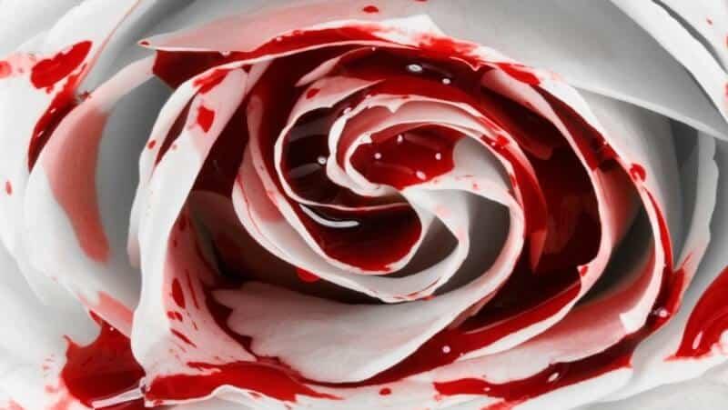 darah_haidh_puasa