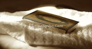 Apa arti kata hikmah dalam Al-Qur'an?